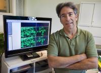 Paul Yaswen, DOE/Lawrence Berkeley National Laboratory