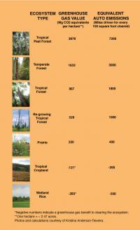 Ecosystem Types