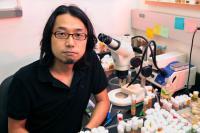 Yoichiro Tamori, Florida State University