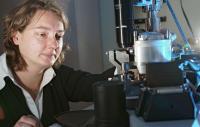 Dr. Stephanie Hoeppener, Friedrich-Schiller-Universitaet Jena