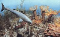 The Ocean in Devonian times