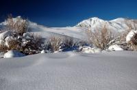 Snowfall in the Eastern Sierras