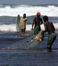 Kenya Fisheries