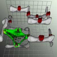 Laser-scanning Microscopy