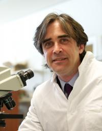 Professor Alastair Florence, University of Strathclyde