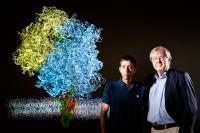 Membrane Protein Researchers