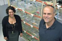 Tanya R. McKitrick and Anthony W. De Tomaso, University of California - Santa Barbara