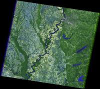 Landsat 5 Image of Memphis Pre-Flooding