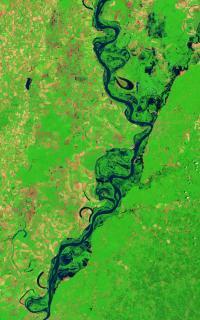 Landsat 5 Image of Flooded Mississippi River