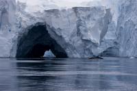 Pine Island Glacier Ice Shelf Upwelling