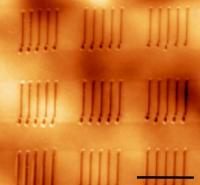 Ferroelectric nanostructures AFM