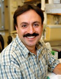 Peter Sicinski, PhD