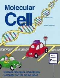Johnston et al. -- <I>Molecular Cell</I>