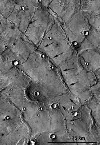 Martian Rilles
