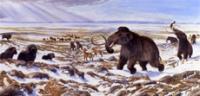 Beringia Winter Scene