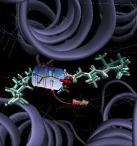 Anabaena Sensory Rhodopsin