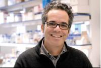Miguel Soares, Instituto Gulbenkian de Ciencia