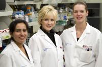Shameema Sarker, Cheryl Nickerson and Aur�lie Crabb�, Arizona State University