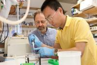 Marc R. Montminy and Yiguo Wang, Salk Institute