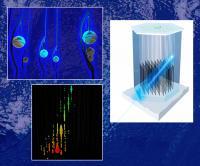 IceCube Detects Neutrinos