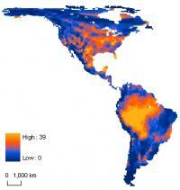 Western Hemisphere Mammals