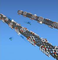 Carbon Nanotube Scheme