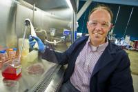 Mark LaBarge, DOE/Lawrence Berkeley National Laboratory
