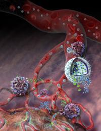 Nanolipogel