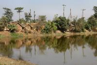 Endemic Village for Kala-azar