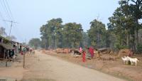 Nepal's Buffer Zone