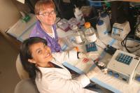 Northern Arizona University Researchers