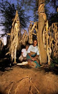 Malawi Soil Pan