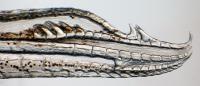<i>Gambusia quadruncus</i> Gonopodium