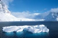 Iceberg MargueriteBay