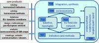ENSyGMO Framework