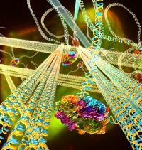 DNA Gel Concept Illustration
