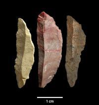 Microlith Blades