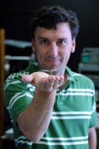 Steven Wiederman, University of Adelaide