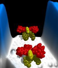 Molecular Motor (1 of 2)