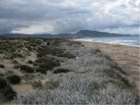 Sardinian Dunes