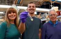 Eileen Hamilton, Michael Lawson, and Eduardo Orias, University of California, Santa Barbara