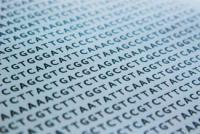 DNA-ATGC