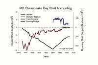 Shell Budget