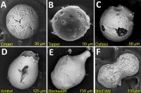 Impact Spherules