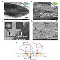 Transparent Electrode Material