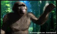 <I>Paranthropus</I>