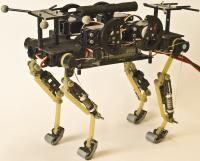 Cheetah-Cub-Robot