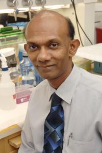Dr. Chandra Mohan, UT Southwestern Medical Center
