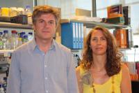 Dr. Miguel Torres and Dr. Cristina Claverias, Centro Nacional de Investigaciones Cardiovasculares
