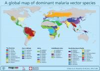 Malaria Map